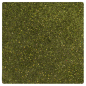 Preview: Nuvo Pure Sheen Glitter - Olive Green