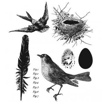 https://www.stamping-fairies.de/montierte-stempel/stampers-anonymous-tim-holtz/tim-holtz-stempelset-bird-feather.html